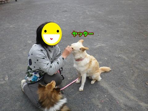 20120422_3.jpg