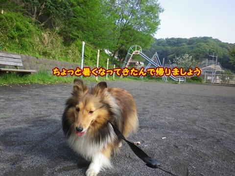 20120429_7.jpg