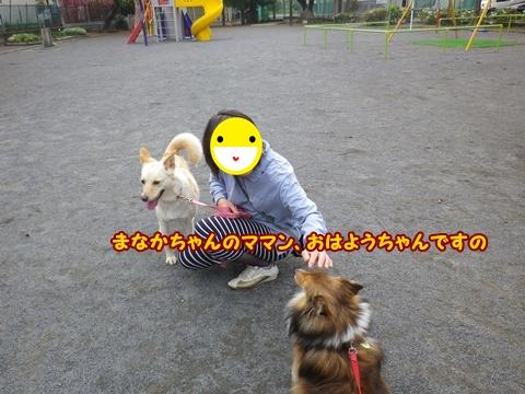 20120429_8.jpg