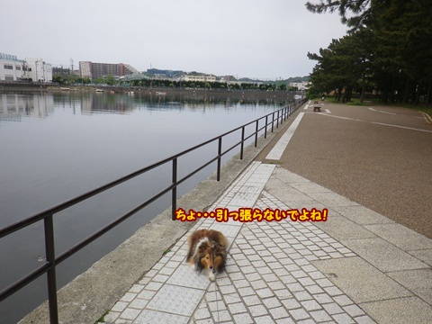20120430_1_5.jpg