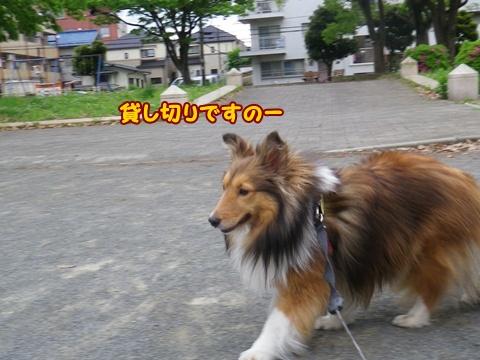 20120512_6.jpg