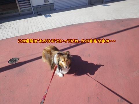 20120513_6.jpg