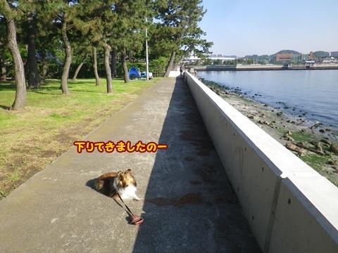 20120519_1_10.jpg