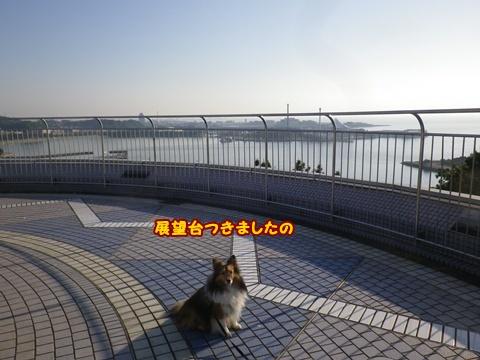 20120519_8.jpg