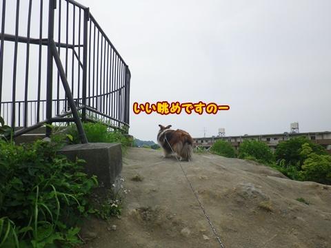 20120520_1_2.jpg