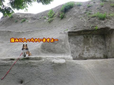 20120520_1_9.jpg