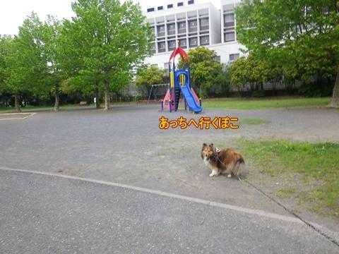 20120520_5.jpg