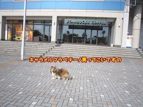 20120527_1_6.jpg