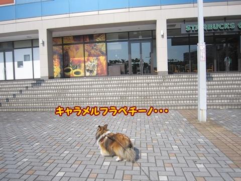 20120527_1_7.jpg