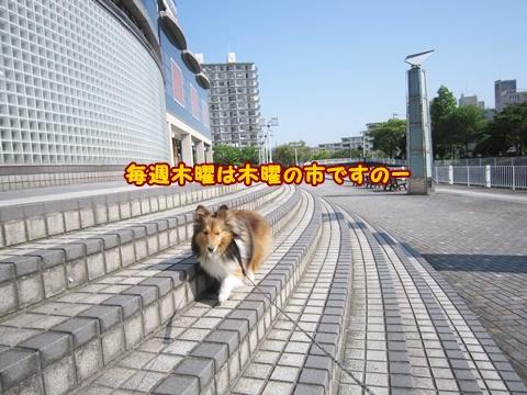 20120527_1_9.jpg