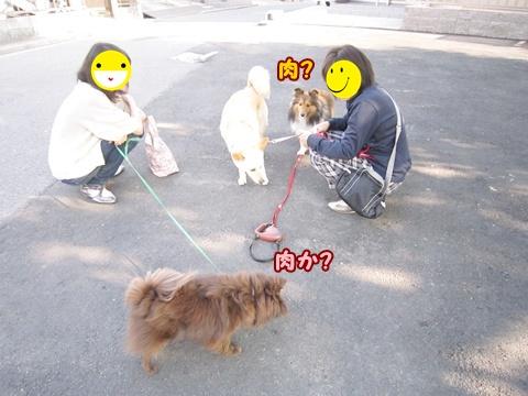 20120527_2.jpg