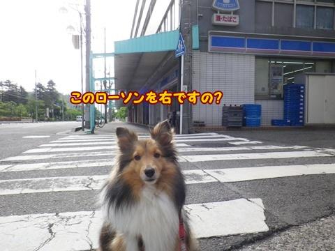 20120610_10.jpg