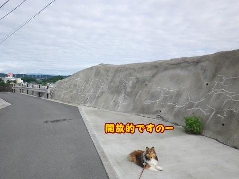 20120610_1_6.jpg
