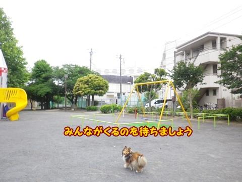 20120616_1.jpg