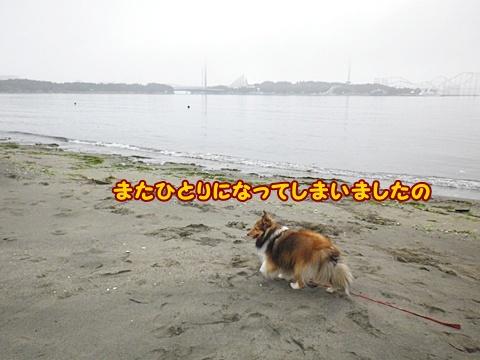 20120623_1_12.jpg