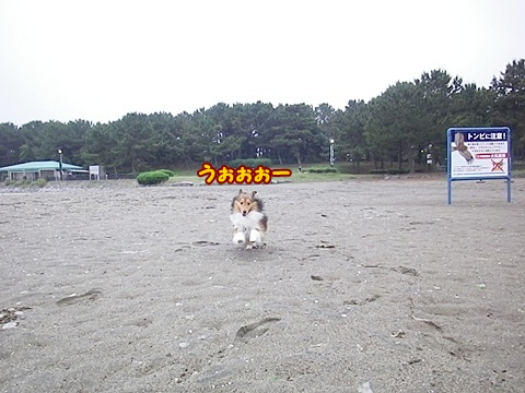 20120623_2_1.jpg