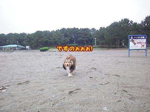 20120623_2_2.jpg