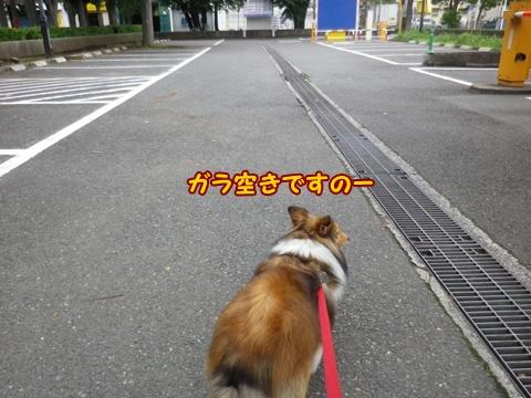 20120624_1_4.jpg