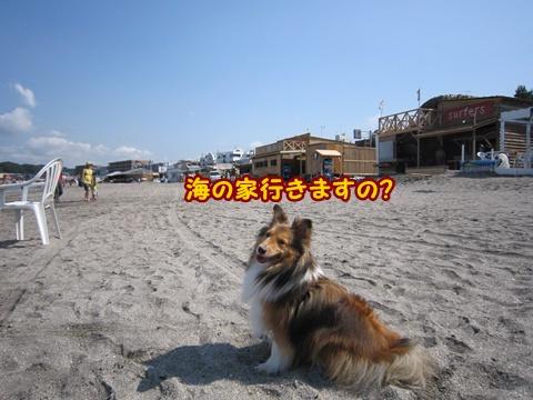 20120630_3.jpg