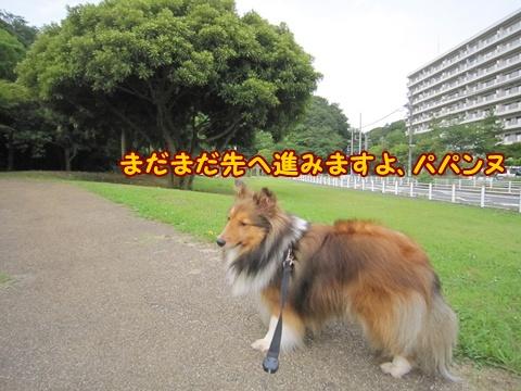 20120701_11.jpg