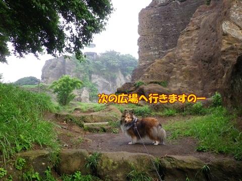 20120707_1_1.jpg
