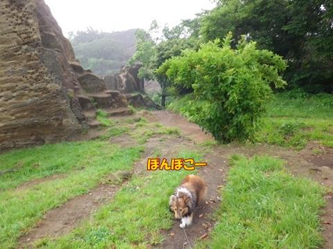 20120707_1_2.jpg