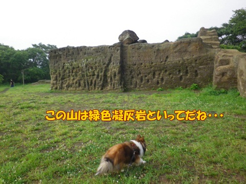 20120707_1_3.jpg