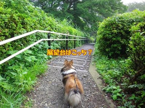 20120707_1_6.jpg