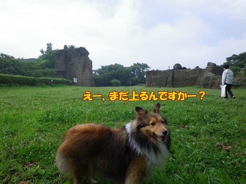 20120707_1_7.jpg