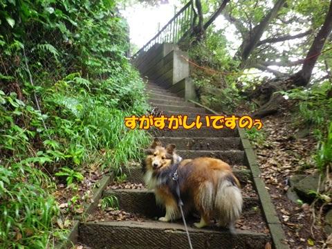 20120707_1_8.jpg