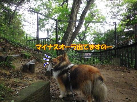 20120707_1_9.jpg