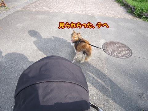 20120714_3.jpg