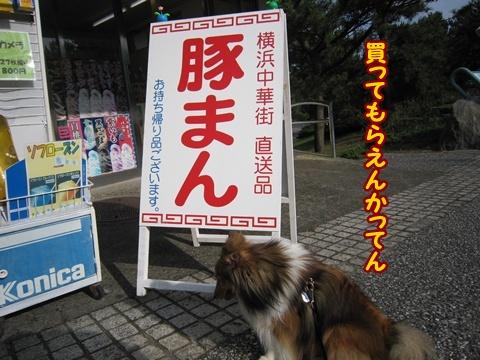 20120714_7.jpg