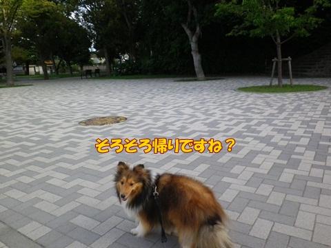 20120716_1_10.jpg