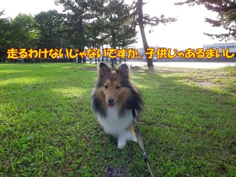 20120716_1_5.jpg