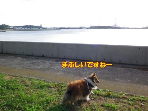 20120716_4.jpg