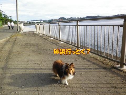20120716_6.jpg