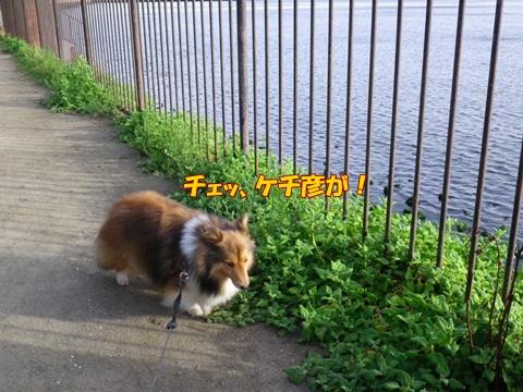 20120716_7.jpg