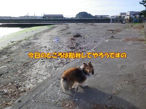 20120716_9.jpg