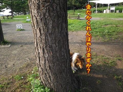 20120728_10.jpg