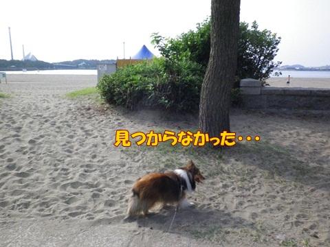 20120728_1_10.jpg