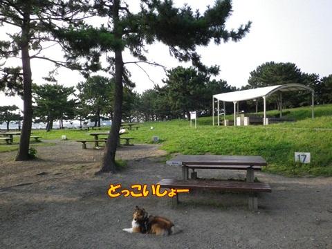 20120728_1_3.jpg