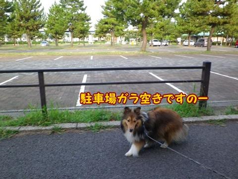20120728_4.jpg