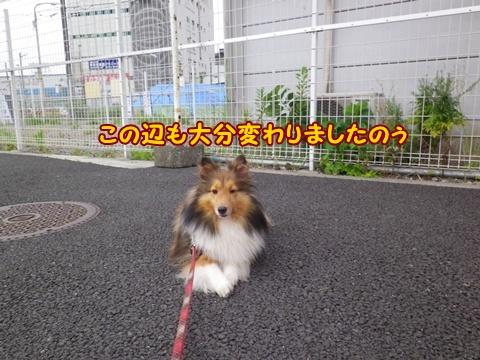 20120804_1_1.jpg