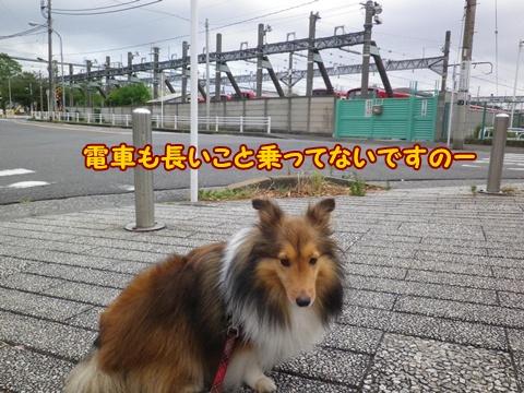 20120804_1_5.jpg