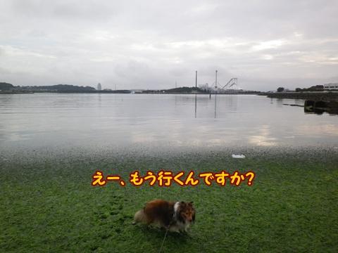 20120812_8.jpg