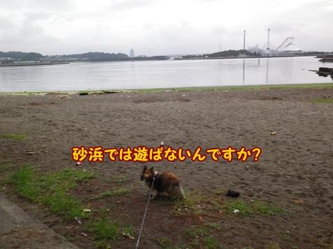 20120812_9.jpg