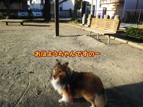 20120819_1.jpg