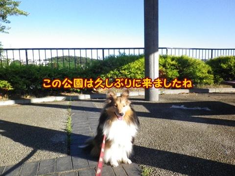 20120819_5.jpg