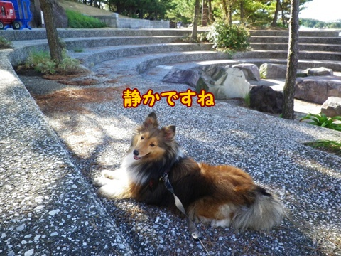 20120826_1_10.jpg
